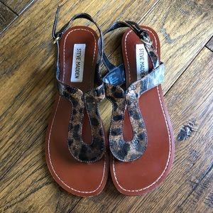 Steve Madden SANFRANN Leopard leather sandals
